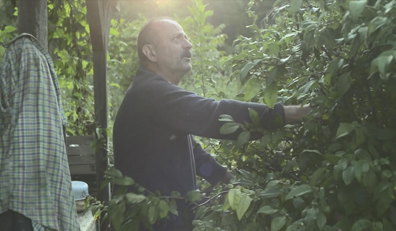 """Един по-различен документален филм за Филип Трифонов: """"Фипо: луд за пенсия"""" 139"""