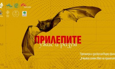 """""""Прилепите: ужас и разум"""" - премиера и дискусия за науката и културата 351"""