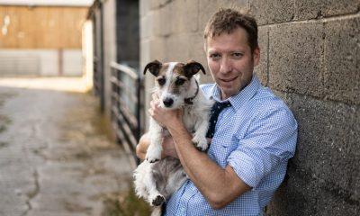 """""""Йоркширският ветеринар"""" на Viasat Nature с неизлъчван досега сезон от Великден 80"""