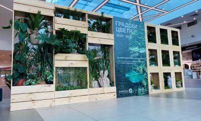 Paradise Center отбелязва Световния ден на околната среда с мащабна инсталация от живи растения 99